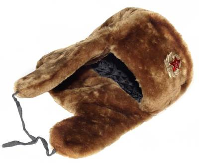 Russian ushanka winter hat. Brown.